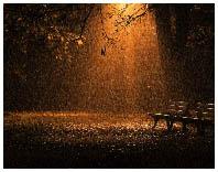 Фото при естественном освещении 6